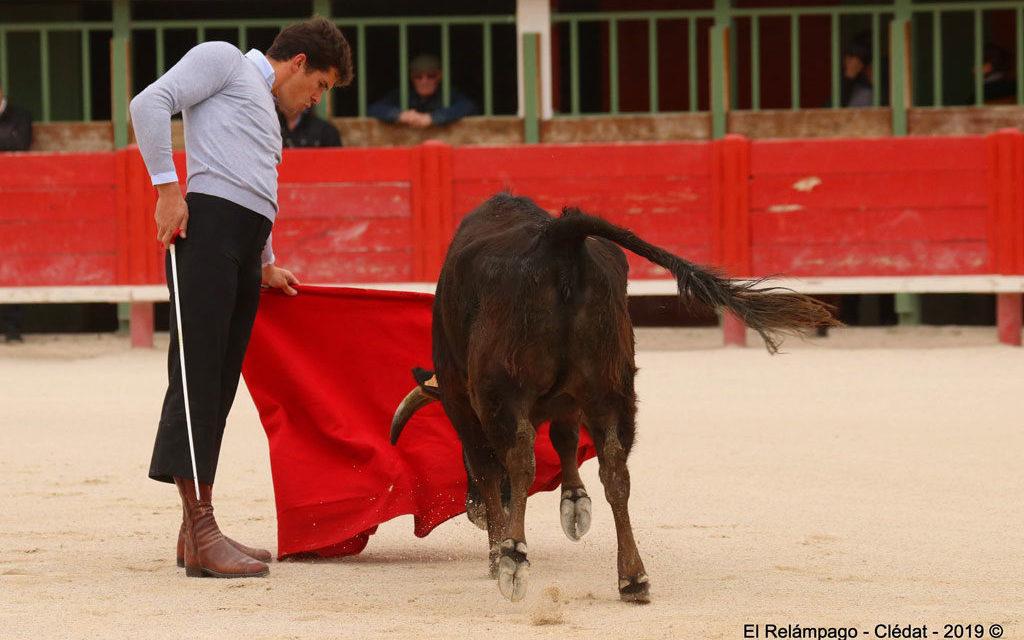 Vauvert: Tentadero de machos, organisé par la Peña taurine Los Manzanares