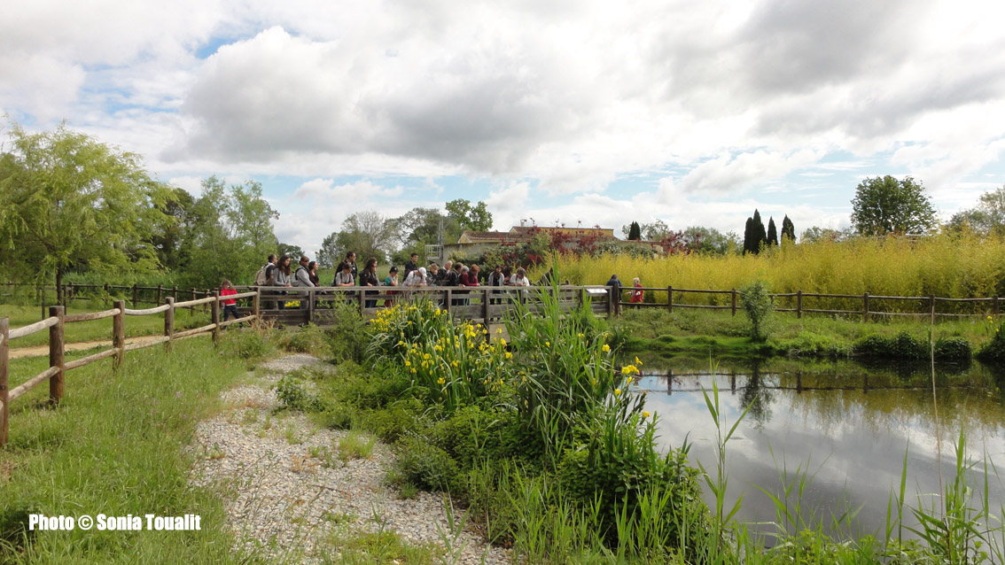 Le Parc des Aigrettes, un cadre bucolique qui vaut le détour
