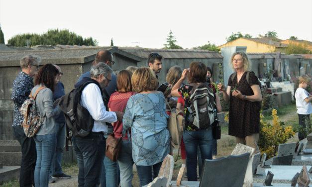 Festival Instants durables à Beauvoisin