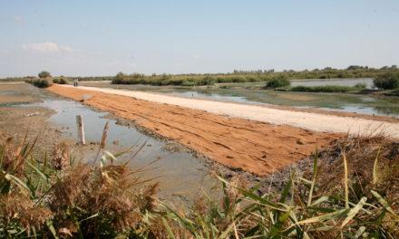 Des travaux importants dans la Réserve Naturelle Régionale du Scamandre