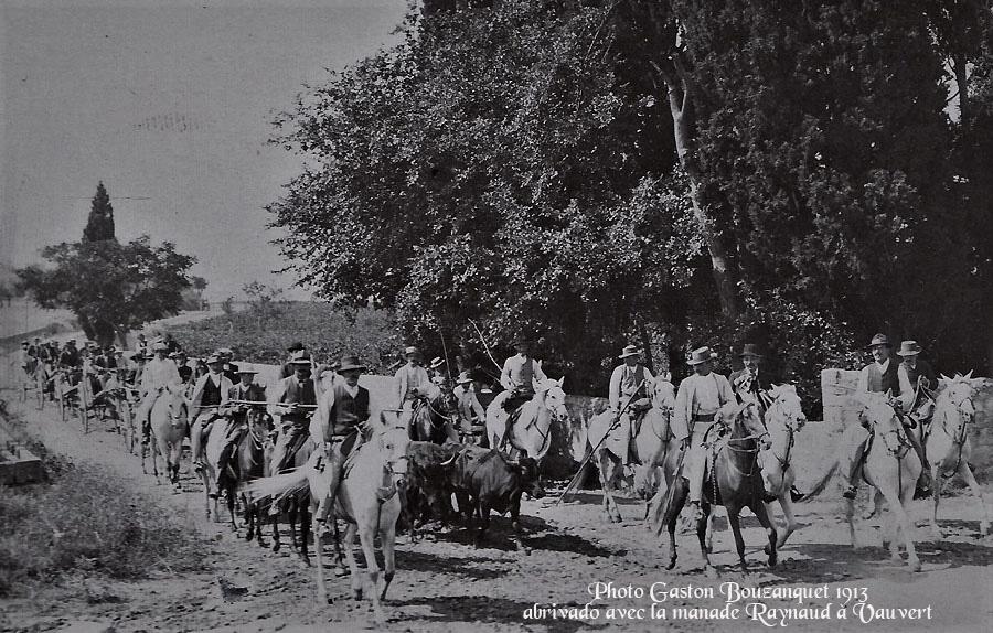 Gaston Bouzanquet, un regard photographique sur la Camargue.