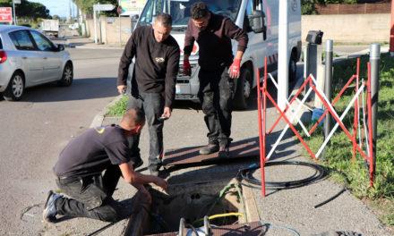 La fibre optique arrive à grands pas en Petite Camargue