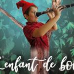 Spectacle musical à Vauvert : Les aventures de Pinocchio