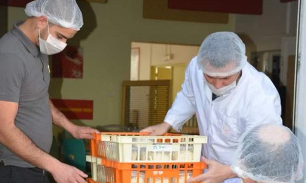 Petite Camargue : La restauration scolaire reprend son activité
