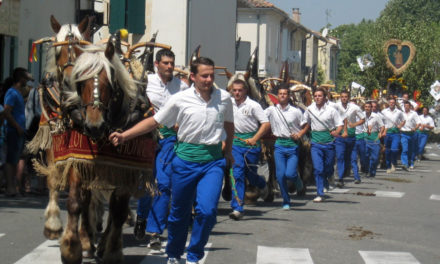 "La tradition des ""carreto ramado"""