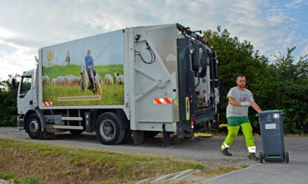 Une flotte de camions de collecte décorée aux couleurs de la Petite Camargue