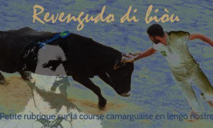 Revengudo di biòu : Petite rubrique taurine en langue provençale