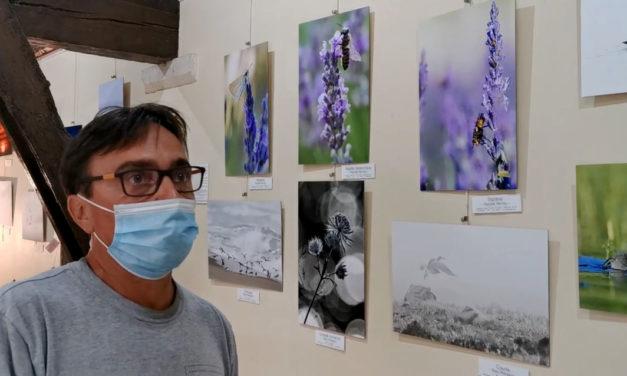 Une belle exposition de photographies à découvrir au Scamandre