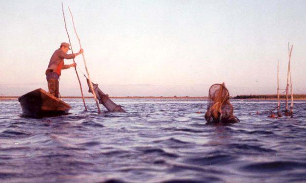 Les Montel : Cinq générations de pêcheurs à Gallician