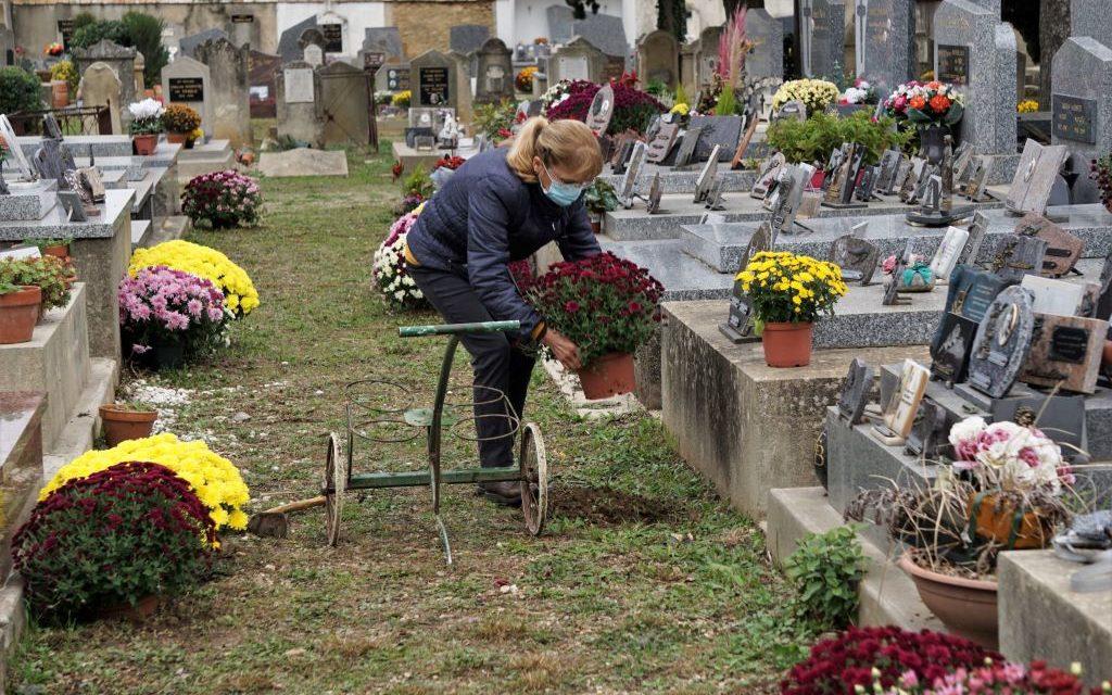 La toussaint fleurit les allées du cimetière.