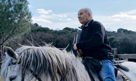 Manadier, gardians, chevaux et taureaux attendent la reprise