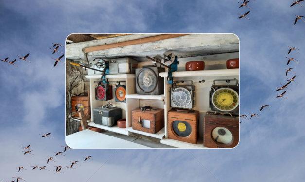 Le Cailar : Le musée du pigeon voyageur devient réalité