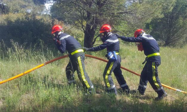 Pompiers : les futures recrues se forment aux feux de forêt