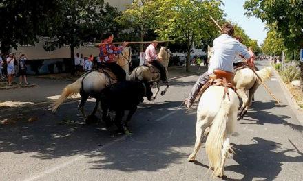L'abrivado de « La Costière » ouvre la fête votive