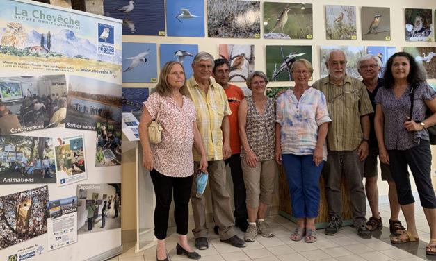 Une exposition au Scamandre sur les oiseaux en danger