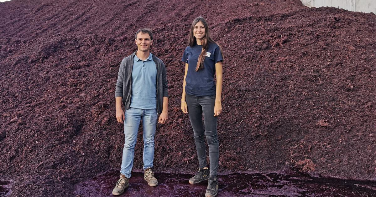 La distillerie UDM de Vauvert recycle les résidus de marc et de lie de vin